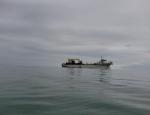 Ecuador: Sector camaronero pide frenar dragado en Puerto Bolívar