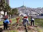 Empresa Portuaria Coquimbo prepara reactivación de la conexión férrea al puerto