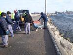 Argentina: Puerto Quequén realiza trabajos de mantenimiento de la escollera sur