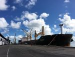 Brasil: Descargan fertilizante en Salvador debido a alta demanda en Aratu-Candeias