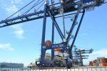 México: Hutchison Ports Icave y Lázaro Cardenas obtienen certificación de OEA