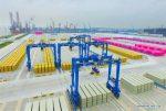 Cosco Shipping Ports inicia operaciones en Nantong Tonghai Terminal