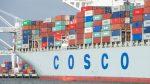 Sitio web de Cosco en Estados Unidos es afectado por ciberataque