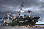 Zeaborne utilizará software de gestión naviera de Navis