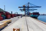 Brasil: Aumenta movimiento de contenedores en instalaciones de la Companhia Docas do Rio de Janeiro