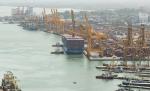 Sri Lanka: Puerto de Colombo destaca como el de mayor crecimiento global en movimiento de contenedores