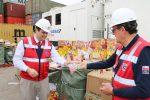 Aduanas incauta tres contenedores con juguetes falsificados en Puerto Arica