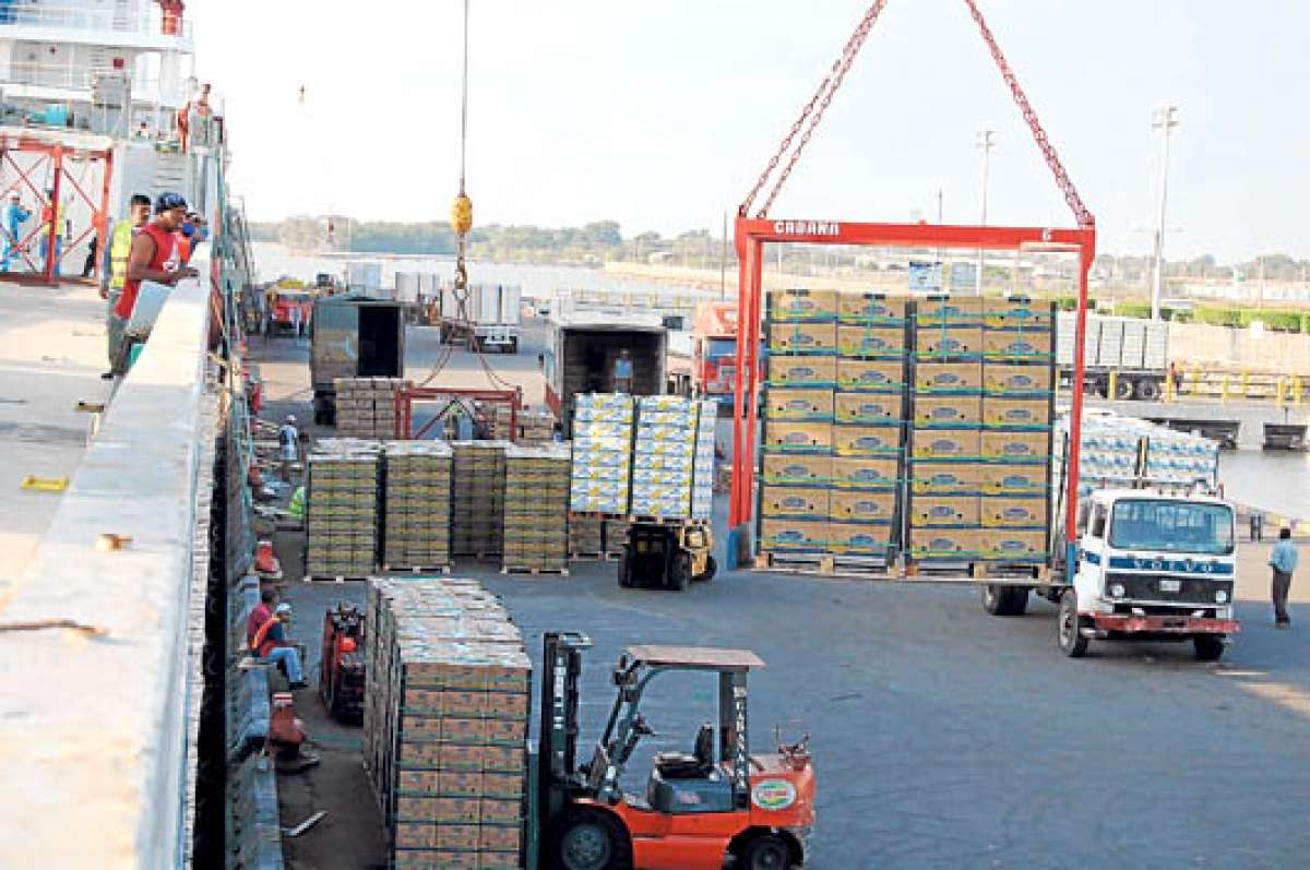 Ecuador: Foro analizará la cadena logística y los mercados internacionales del banano