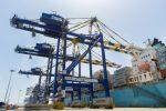 India: DP World construirá zona de almacenamiento de 18 hectáreas en Puerto Jawaharlal Nehru