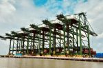 PSA Bharat Mumbai Container Terminals alcanza marca de 155 movimientos por hora