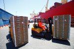 Importación y exportación de productos hortofrutícolas en puertos españoles crece un 25%