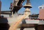 Puerto de Santos supera las 100 millones de toneladas transferidas en nueve meses