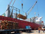 Argentina: Puerto de Concepción del Uruguay exporta 19.000 toneladas de madera hacia China