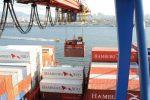 Brasil: Puerto de Santos estima transferencia de  4,1 millones de TEU para cierre de 2018