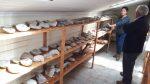 Aduanas y Consejo de Monumentos Nacionales clasifican fósiles y otras especies decomisadas