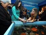 Acuario de Valparaíso reabre sus puertas con apoyo de EPV