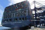 CMA CGM y CEVA lanzan nuevo servicio transfronterizo para transporte de contenedores en Asia
