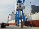 España: Puerto de Castellón incrementa 5,7% su movimiento de cítricos en 2018