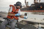 Brasil: Puertos de Paraná monitorean sedimentos y biota acuática