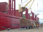 Argentina: Puerto de Concepción del Uruguay suma tres recaladas de buques para abril