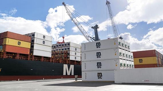 MSC no puede descargar contenedores reefer en puerto chino