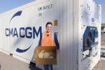 Australia: Puerto de Townsville realiza prueba de contenedores refrigerados para productos hortofrutícolas