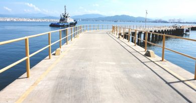 México: Terminal de Cruceros de Manzanillo comenzará a ser usado para actividades recreativas
