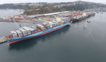 SVTI es el primer terminal portuario del Bio Bio y el segundo de Chile en incorporarse a la plataforma TradeLens