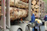 Cursan 80 multas a vehículos de carga en la Ruta de la Madera