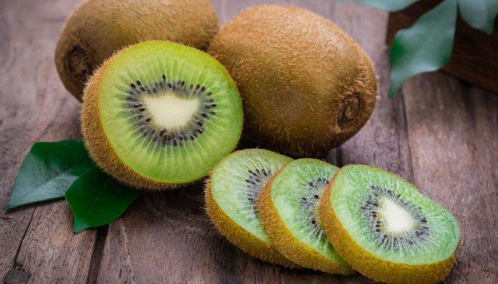 Exportación de kiwi chileno cae 12% en lo que va de la temporada