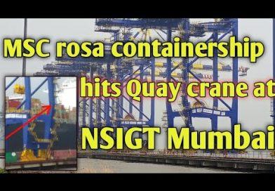 Video: Buque de MSC golpea y produce daños en grúa del Ngava Sheva Container Terminal