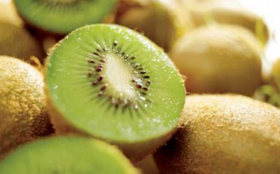 Chile Begins Second Stage Of Kiwi Season For Export