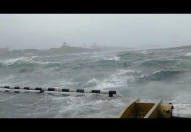 Video| Tifón Maysak azota al terminal de contenedores de Vladivostok en Rusia