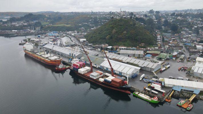 Exportaciones de Región de Los Lagos a Japón aumentan 29% en primer trimestre