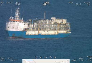 Video: Buque de transporte de ganado sufre daños en su casco y es remolcado a Australia