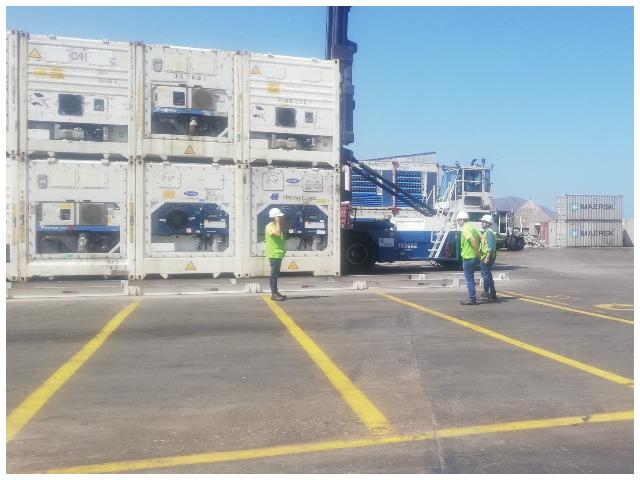 Realizan 5.743 inspecciones y certificados para la importación y exportación agropecuaria en el Puerto de Barranquilla