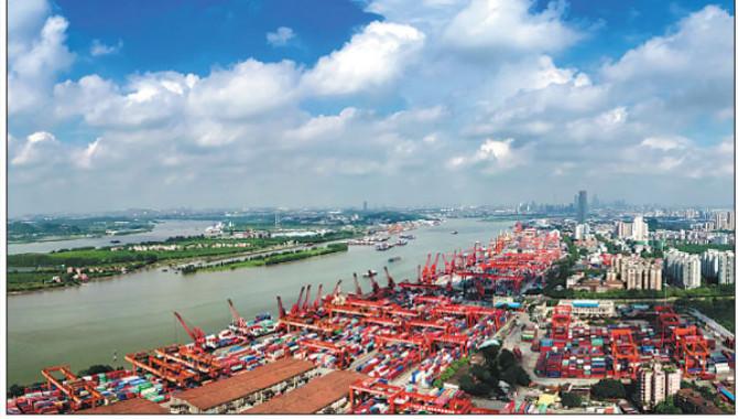 ONE no trasladará productos refrigerados al Puerto de Huangpu por demoras asociadas a inspecciones sanitarias