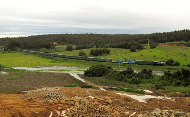 Grupo EFE inicia licitación para mantenimiento de ramal Rucapequén - Nueva Aldea