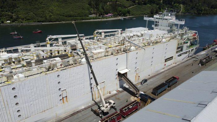 Video: El mayor embarque de ganado vivo en Puerto Montt