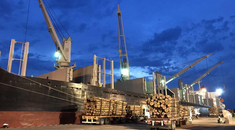 Argentina: Anuncian llegada de nuevo operador logístico al Puerto de  Concepción del Uruguay - PortalPortuario