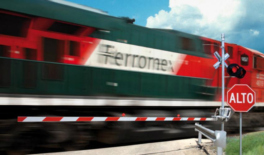 Grupo México Transportes sufre caída de ingresos en 2020 por el Covid-19
