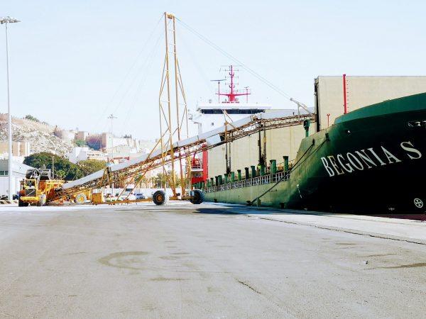 La comercialización de sal común desde el Puerto de Almería crece 250% en enero