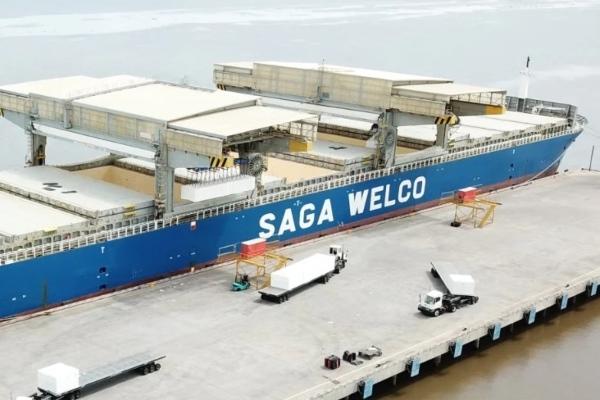 Buques especiales para celulosa llegan a puertos uruguayos