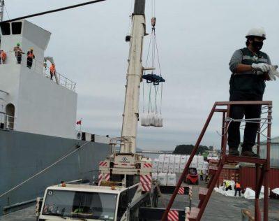 Galería: Talcahuano Terminal Portuario embarca vaquillas por segunda vez en el Bio Bio