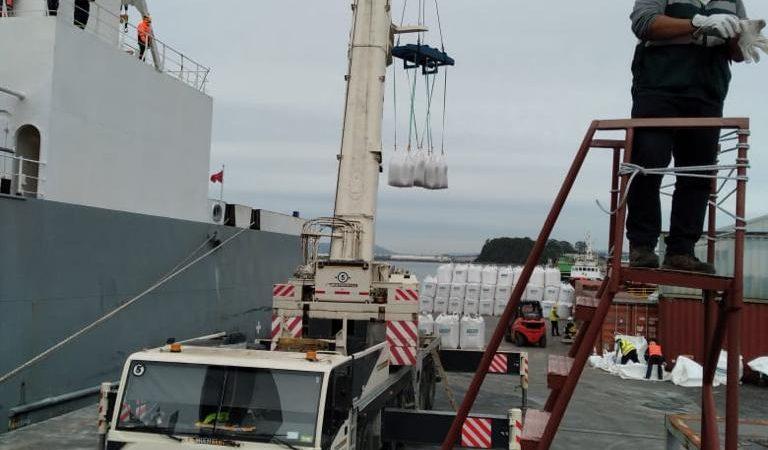 Segundo embarque vaquillas Talcahuano TTP (11)