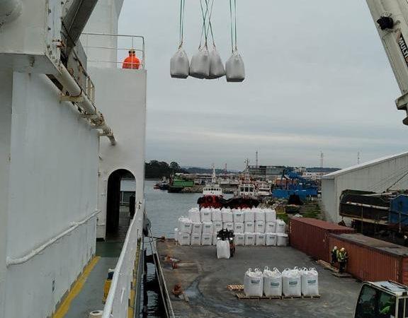 Segundo embarque vaquillas Talcahuano TTP (4)
