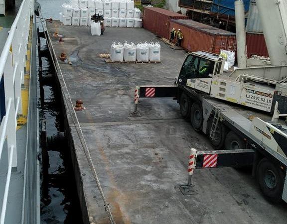 Segundo embarque vaquillas Talcahuano TTP (9)
