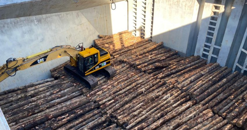 primer embarque troncos puerto montt (1)