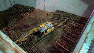 Galería: Revisa el embarque de troncos que se desarrolla en el Puerto de Puerto Montt